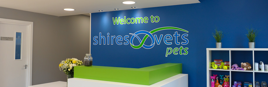 Terms and Conditions - Shires Vets