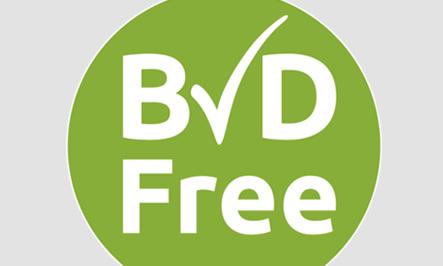BVD Free Logo